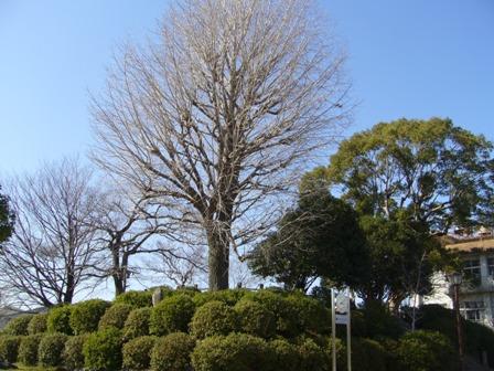 福島城 022.jpg