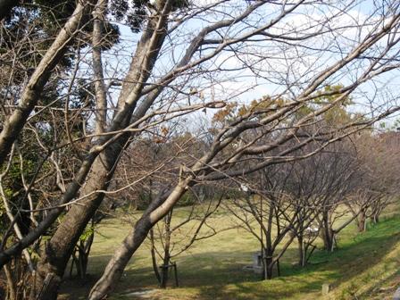 龍頭山 045.jpg