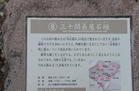 DSC_7186 (800x526).jpg