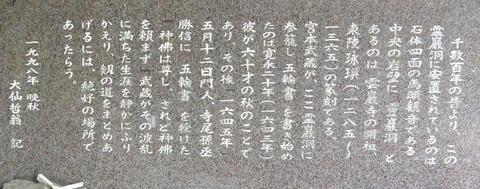 DSC_7539 (800x315).jpg
